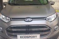Cơ hội duy nhất để mua Ecosport 1.5L Trend MT với giá cực tốt 539 triệu giá 539 triệu tại Tp.HCM
