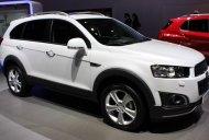 Cần bán xe Chevrolet Captiva LTZ màu trắng xe mới 100% khuyến mãi lớn bằng tiền mặt  giá 829 triệu tại Đồng Nai