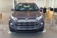 Bán Ford EcoSport Trend đời mới, giá thương lượng giá 550 triệu tại Hà Nội