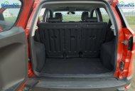 Bán ô tô Ford EcoSport 1.5AT Titanium đời 2014, màu đỏ, gắn đầy đủ đồ chơi  giá 620 triệu tại Tp.HCM