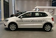 Cần bán Volkswagen Polo sản xuất 2016, xe nhập, 695tr giá 695 triệu tại Tp.HCM