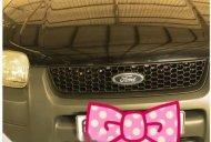 Cần bán xe Ford Escape 2.0 đời 2003, màu đen số sàn giá 265 triệu tại Cần Thơ