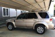Bán ô tô Ford Escape XLS 2.3AT đời 2009, màu bạc chính chủ, giá 455tr giá 455 triệu tại BR-Vũng Tàu
