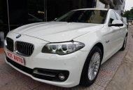 Cần bán BMW 5 Series 520 LCI đời 2014, màu trắng, nhập khẩu giá 1 tỷ 600 tr tại Hà Nội