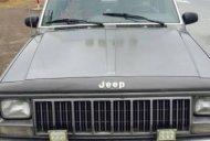 Cần bán gấp Jeep Cherokee đời 1995 giá 99 triệu tại Hà Nội