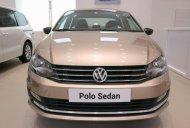 Bán Volkswagen Polo đời 2018, màu xanh lam, nhập khẩu giá 699 triệu tại Tp.HCM