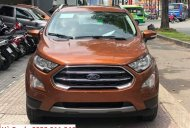 Bán ô tô Ford EcoSport đời 2019 giá chỉ từ 520 triệu , đủ phiên bản và đủ màu giao ngay giá 520 triệu tại Tp.HCM