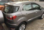 Bán ô tô Ford EcoSport Titanium 1.5 AT đời 2014, màu xám (ghi), giá thỏa thuận, hỗ trợ vay, hotline: 090.12678.55 giá 500 triệu tại Tp.HCM