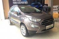 Đại Lý Ford chính hãng bán Ecosport bản thường giá phải chăng, giao xe tại Hòa Bình, LH 0941921742 giá 590 triệu tại Hòa Bình