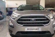 Khuyến mãi siêu khủng Ford Ecosport 2018 giá 593 triệu tại Tp.HCM