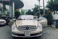 Bán Mercedes R350 sản xuất 2006, màu vàng, nhập khẩu giá 500 triệu tại Tp.HCM