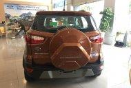 Bán ô tô Ford EcoSport 1.5L Titanium AT đời 2019, màu nâu, giá chỉ 605 triệu liên hệ 0911997877 giá 605 triệu tại Hải Phòng