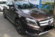 Cần bán lại xe Mercedes 250 4Matic đời 2016, màu nâu, giá tốt giá 1 tỷ 300 tr tại Cần Thơ