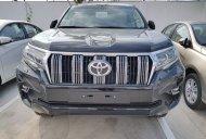 Toyota Tân Cảng bán Toyota Land Cruiser Prado nhập khẩu tại Nhật-mới 100% - đủ màu giao xe ngay giá 2 tỷ 340 tr tại Tp.HCM
