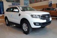 Bán ô tô Ford Everest sản xuất 2019, màu trắng, xe nhập giá 999 triệu tại Nam Định