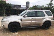 Cần bán lại xe Ford Escape XLS 2.3L 4x2 AT đời 2009, màu hồng   giá 385 triệu tại Bắc Kạn