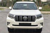 Bán Toyota Land Cruiser Prado mới 100%, NK Nhật Bản, giá tốt, LH 0942.456.838 giá 2 tỷ 320 tr tại Hòa Bình
