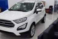 Bán xe Ford EcoSport Trend AT năm sản xuất 2019, màu trắng, giao ngay, nhiều khuyến mãi hấp dẫn giá 580 triệu tại Tp.HCM