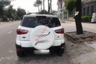 Bán ô tô Ford EcoSport Titanium 2015, màu trắng  giá 480 triệu tại Vĩnh Long