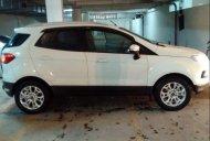 Bán Ford EcoSport Titanium 1.5 AT đời 2014, màu trắng còn mới, giá tốt giá 486 triệu tại Tp.HCM