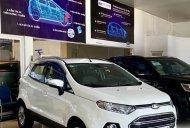 Ford EcoSport Titanium 1.5 AT 2014, xe bán tại hãng Ford An Lạc giá 485 triệu tại Tp.HCM