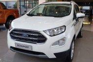 Bán xe Ford EcoSport 1.5L Titanium đời 2019, màu trắng, 618tr giá 618 triệu tại Tp.HCM