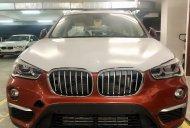 Bán BMW X1 tại Đà Nẵng - Xe chưa đăng ký giá 1 tỷ 859 tr tại Đà Nẵng
