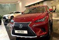 Cần bán Lexus NX 300 năm 2019, màu đỏ, nhập khẩu nguyên chiếc giá 2 tỷ 510 tr tại BR-Vũng Tàu