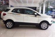 Bán Ford EcoSport 1.5 Titanium sản xuất 2017, màu trắng, giá tốt giá 560 triệu tại Hải Phòng