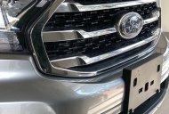 Bán ô tô Ford Everest đời 2019, màu xám, xe nhập giá 1 tỷ 92 tr tại BR-Vũng Tàu