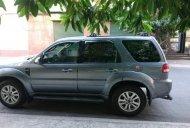 Bán Ford Escape XLT sản xuất năm 2009, màu bạc giá 430 triệu tại Tp.HCM