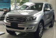 Cần bán xe Ford Everest đời 2019, màu xám, nhập khẩu giá 1 tỷ 177 tr tại Tp.HCM