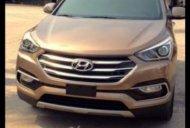 Bán ô tô Hyundai Santa Fe 2.4AT đời 2017, màu nâu, xe nhập, không bị trầy xước giá 820 triệu tại Gia Lai