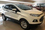 Bán Ford Ecosport Titanium 2017, đi 5000 km, xe bán và bảo hành tại hãng Ford giá 585 triệu tại Tp.HCM