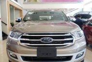 Bán xe Ford Ranger sản xuất năm 2019, màu nâu, nhập khẩu giá 979 triệu tại Tp.HCM