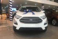 Bán xe Ford Ecosport như mới đời 2019 giá 490 triệu tại Tp.HCM