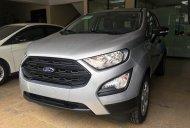 Bán Ford EcoSport đời 2019, màu bạc, giá tốt giá 490 triệu tại Tp.HCM