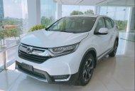 Cần bán Honda CR V đời 2019, màu trắng, nhập khẩu nguyên chiếc, giá chỉ 983 triệu giá 983 triệu tại Lâm Đồng