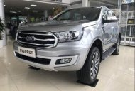 Cần bán Ford Everest đời 2019, màu bạc, nhập khẩu nguyên chiếc, thiết kế hiện đại, tiện nghi giá 929 triệu tại Hà Nội