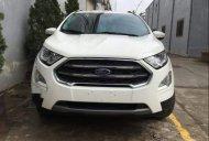 Bán xe Ford EcoSport 2019, màu trắng, mới hoàn toàn giá 545 triệu tại Phú Thọ