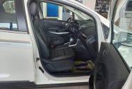 Bán xe Ford EcoSport 2019, màu trắng giá 620 triệu tại Tp.HCM