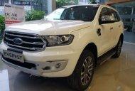 Bán Ford Everest Titanium đời 2019, màu trắng, nhập khẩu giá 1 tỷ 117 tr tại Nghệ An