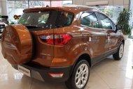 Bán Ford Ecosoprt sản xuất năm 2019, giá chỉ 590 triệu, xe nhập với nhiều ưu đãi hấp dẫn, đủ màu giao ngay giá 590 triệu tại Hà Nội