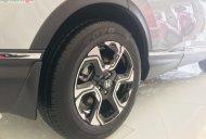 Bán xe Honda CR V E đời 2019, màu bạc, nhập khẩu, giá 983tr giá 983 triệu tại Bình Thuận