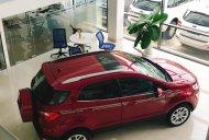 Bán Ford Ecosport 2019 đủ phiên bản đủ màu, chỉ 1xx nhận xe ngay, vay 80% - 7 năm, bao đậu hồ sơ vay giá 545 triệu tại Tp.HCM