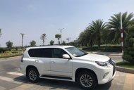 Bán xe Lexus GX460 Luxury 2016 màu trắng, BSTP chính chủ giá 4 tỷ 550 tr tại Tp.HCM