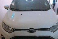 Cần bán xe Ford EcoSport đời 2017, màu trắng chính chủ giá 540 triệu tại Hà Nội