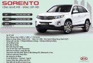 Bán Kia Sorento - 250tr nhận xe ngay giá 799 triệu tại Tp.HCM