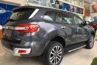 Bán xe Ford Everest Titanium 4x4 Bi-Turbo đời 2019, nhập khẩu nguyên chiếc giá 1 tỷ 399 tr tại Tp.HCM