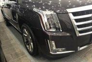 Cần bán Cadillac Escalade sản xuất năm 2014, nhập khẩu giá 4 tỷ 700 tr tại Tp.HCM